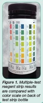 Today's Technician Urinalysis In Companion Animals Part 2: Evaluation Of Urine Chemistry & Sediment