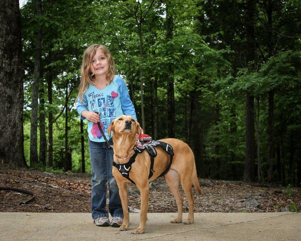 Can You Get A Service Dog If You Have Diabetes?