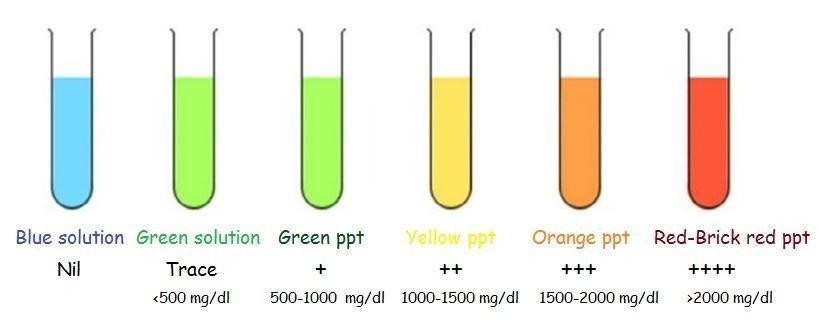 Benedict's Test : Principle, Reagent Preparation, Procedure And Interpretation | Laboratoryinfo.com