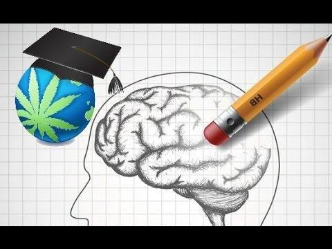 Can Metformin Cause Short Term Memory Loss?