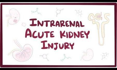 Why Does Acute Kidney Injury Cause Metabolic Acidosis?