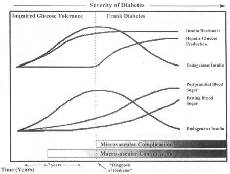 History Of Diabetes Type 2