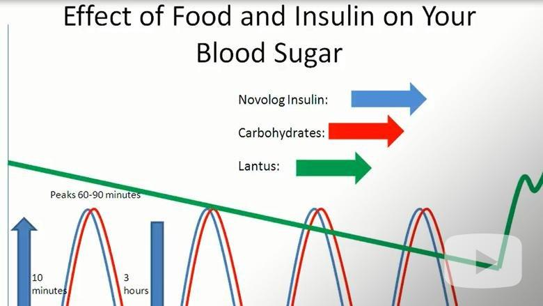 Effect Of Food And Insulin On Blood Sugars