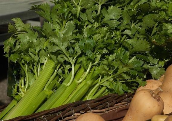 Celery Juice For Diabetes
