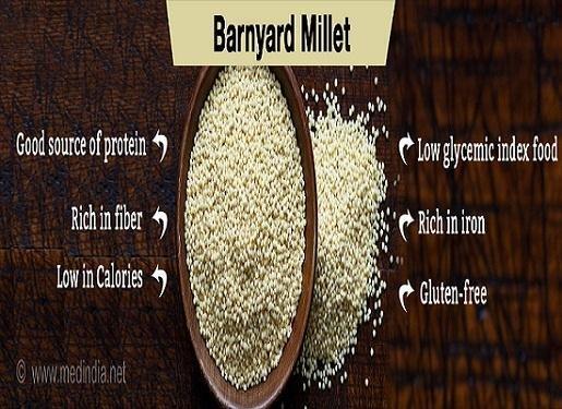 Barnyard Millet : The Rice For Diabetic Patients