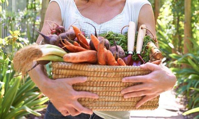 Are Vegetarians More Likely To Get Diabetes