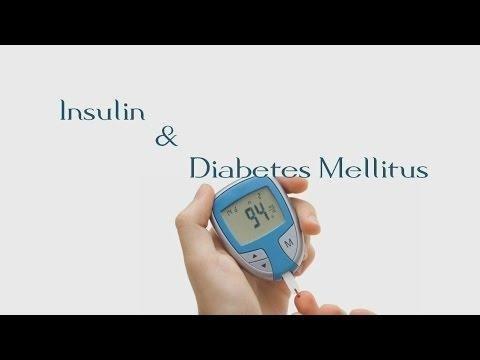 Diabetes Mellitus | The Biochemistry Questions Site