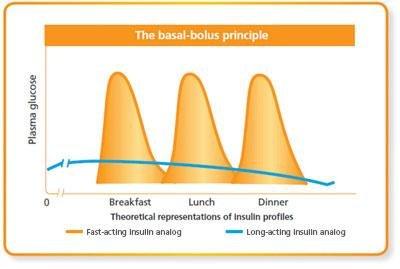Basal-bolus Insulin Therapy