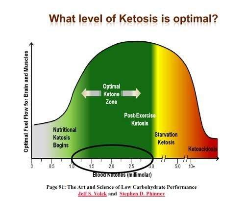 Ketogenic Diet Experience - Updated Blood Clotting