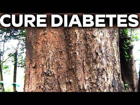 Diabetes Cure Naturally