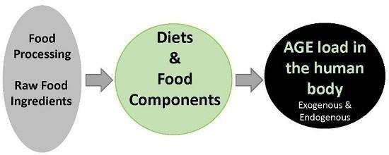 Foods | Free Full-text | How Can Diet Affect The Accumulation Of Advanced Glycation End-products In The Human Body? | Html