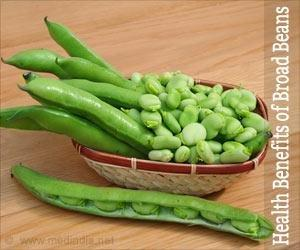 Health Benefits Of Broad Beans
