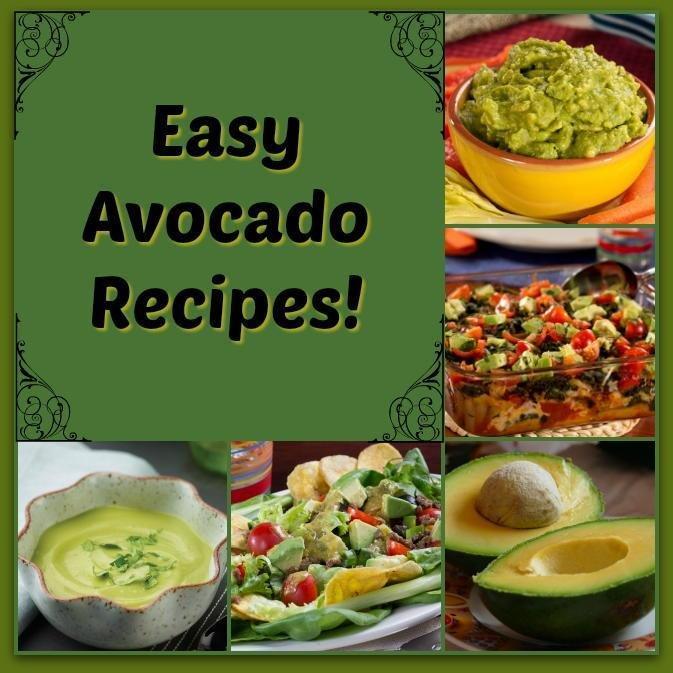 Easy Avocado Recipes | Everydaydiabeticrecipes.com