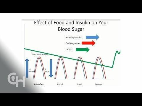 What Is Basal And Bolus Insulin?
