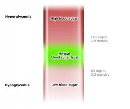 Type 2 Diabetes: Measuring Sugar Levels In Blood And Urine Yourself