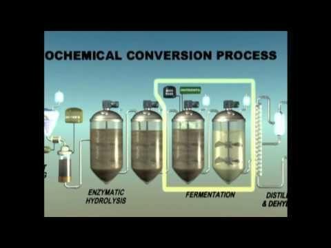 Us3922199a - Enzymatic Hydrolysis Of Granular Starch - Google Patents