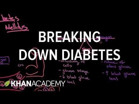 Breaking Down Diabetes