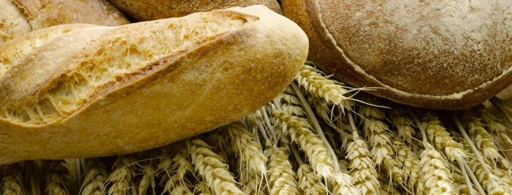 Should You Worry About Wheat?