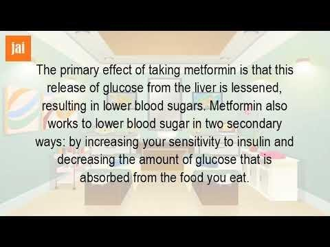 What Exactly Does Metformin Do To Your Body?