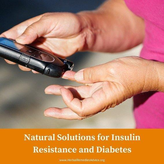 Herbs And Supplements For Insulin Resistance