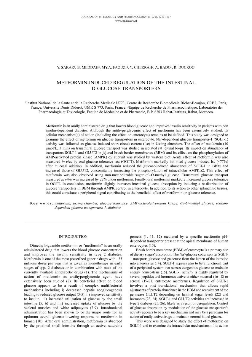 Metformin-induced Regulation Of The Intestinal D-glucose Transporters
