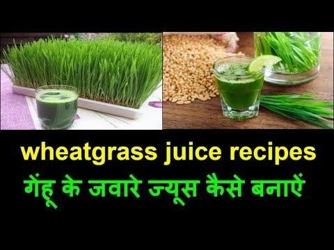 Wheatgrass Heals Diabetic Foot Ulcers