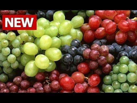 Type 2 Diabetes And Glycemic Response To Grapes Or Grape Products1,2