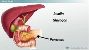 Pancreas Disorders