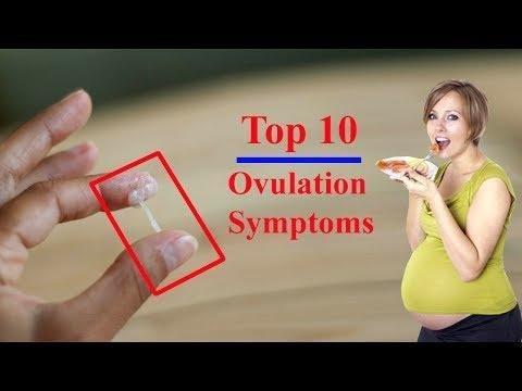 Metformin Ovulation Calculator Ovary Tumor Symptoms Teratoma