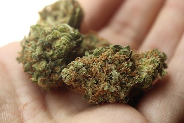Medical Marijuana And Diabetes
