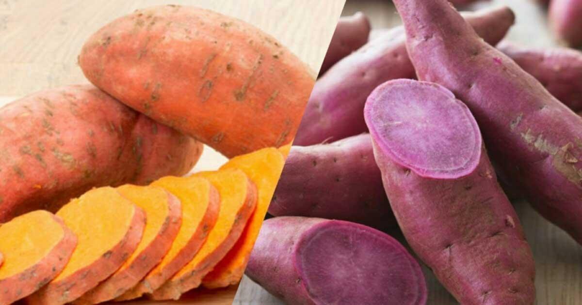 Should You Eat Sweet Potatoes If You Have Diabetes?