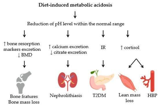 Nutrients | Free Full-text | Diet-induced Low-grade Metabolic Acidosis And Clinical Outcomes: A Review