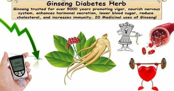 Ginseng For Diabetes Control