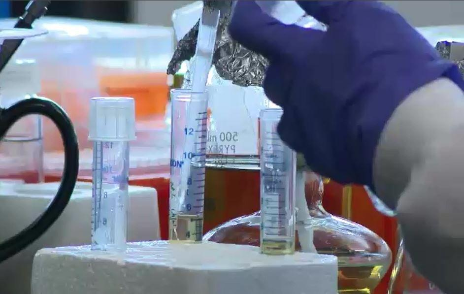 $2m Granted To Unr School Of Medicine Researchers For Diabetes B - Ktvn Channel 2 - Reno Tahoe Sparks News, Weather, Video