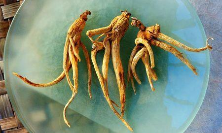 Ginseng And Diabetes Type 2