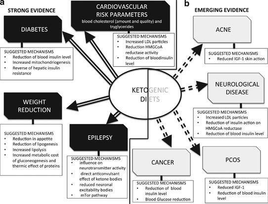 Beyond Weight Loss: A Review Of The Therapeutic Uses Of Very-low-carbohydrate (ketogenic) Diets