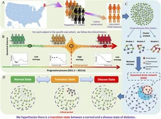 Defining And Characterizing The Critical Transition State Prior To The Type 2 Diabetes Disease