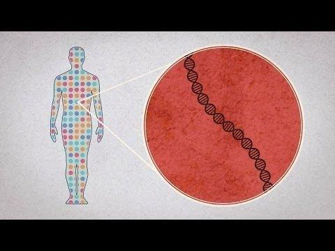 What Bad Things Can Be Done With Someones Whole Genome Sequence And How Can We Prevent That From Happening?