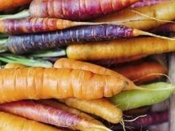 Carrots: Benefits, Nutrition, Diet, And Risks
