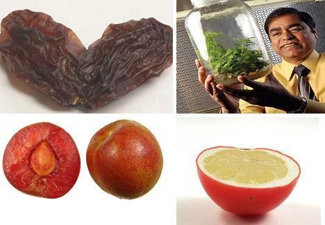 Diabetes Fighting Lettuce