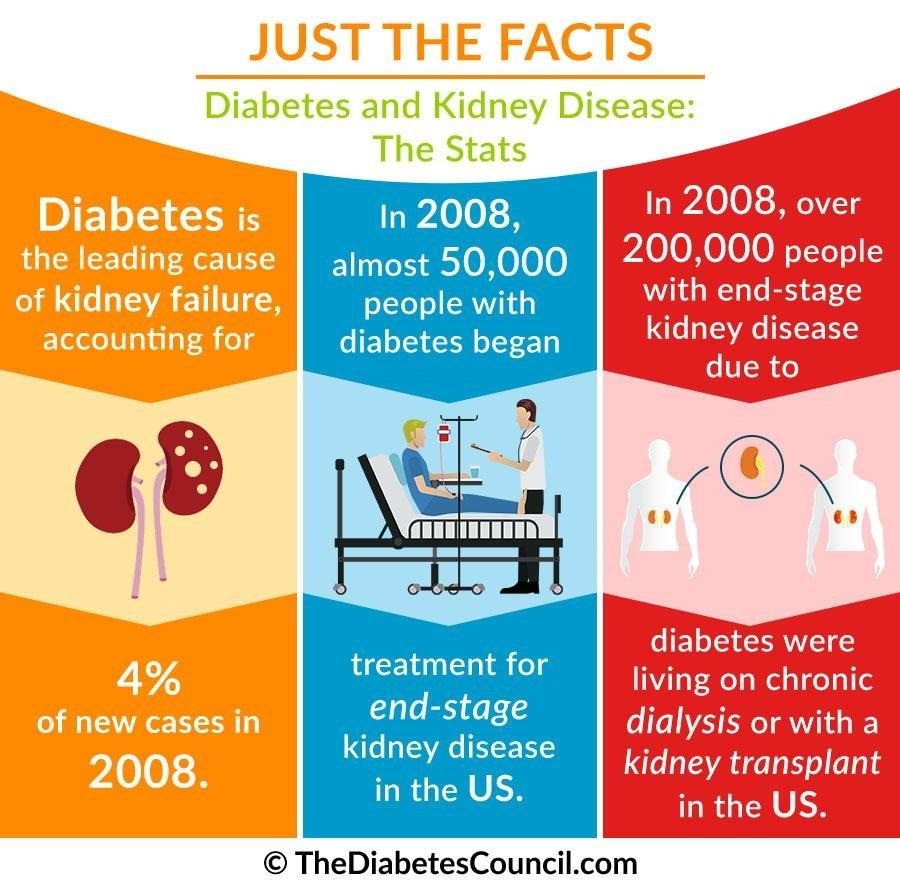 Diabetes And Renal Failure: Everything You Need To Know