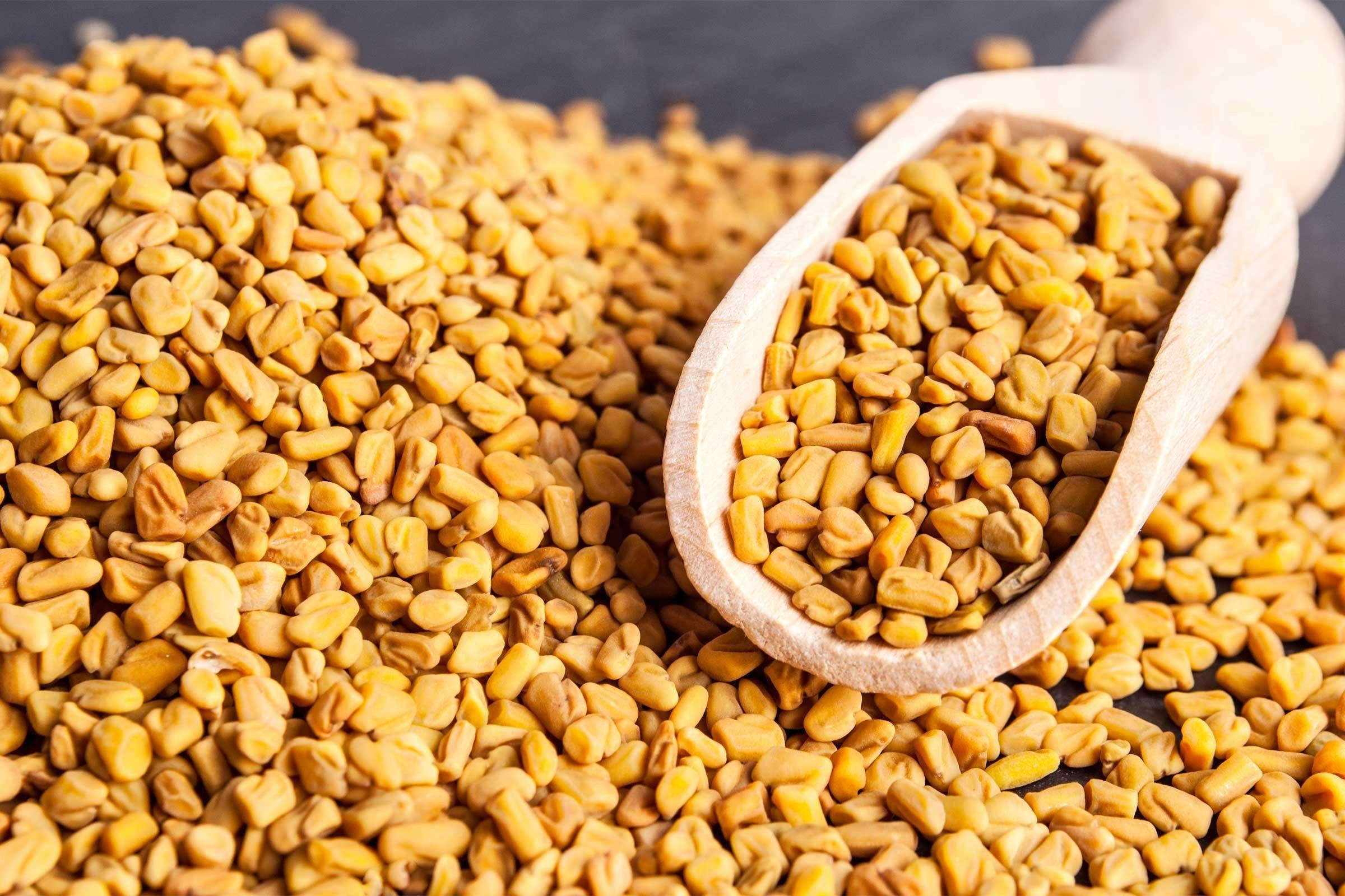 Can Fenugreek Seeds Cure Diabetes