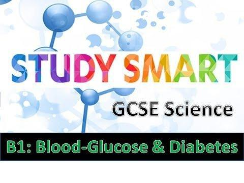 How Blood Glucose Levels Are Controlled?