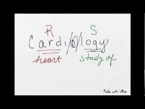 Medical Terminology - Chapter 18