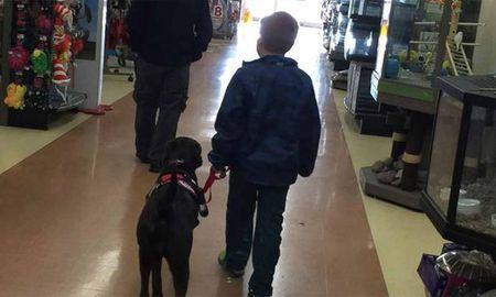 Boy with diabetes saves pennies for 4 years to get service dog