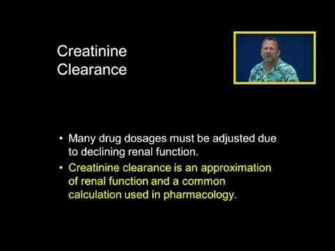 Metformin Contraindications Creatinine Clearance