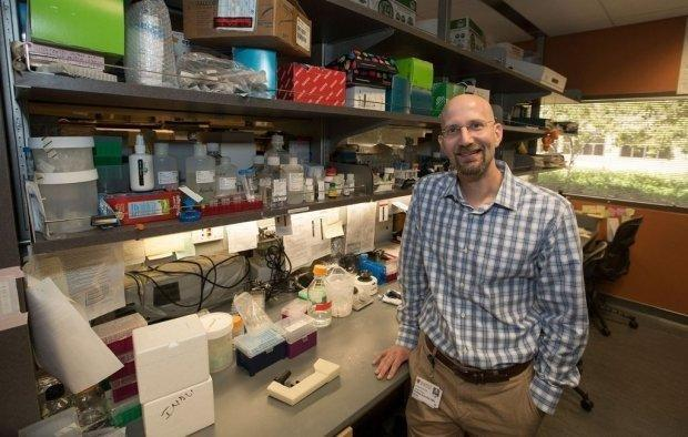 Gene Could Help Explain Insulin Resistance