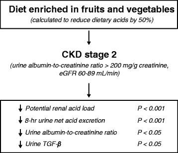 Diets For Patients With Chronic Kidney Disease, Should We Reconsider?