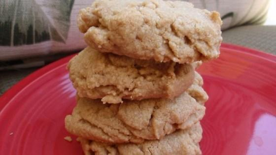 Diabetic Cookies Without Sugar Substitute