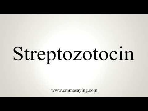 How Does Streptozotocin Induced Diabetes?
